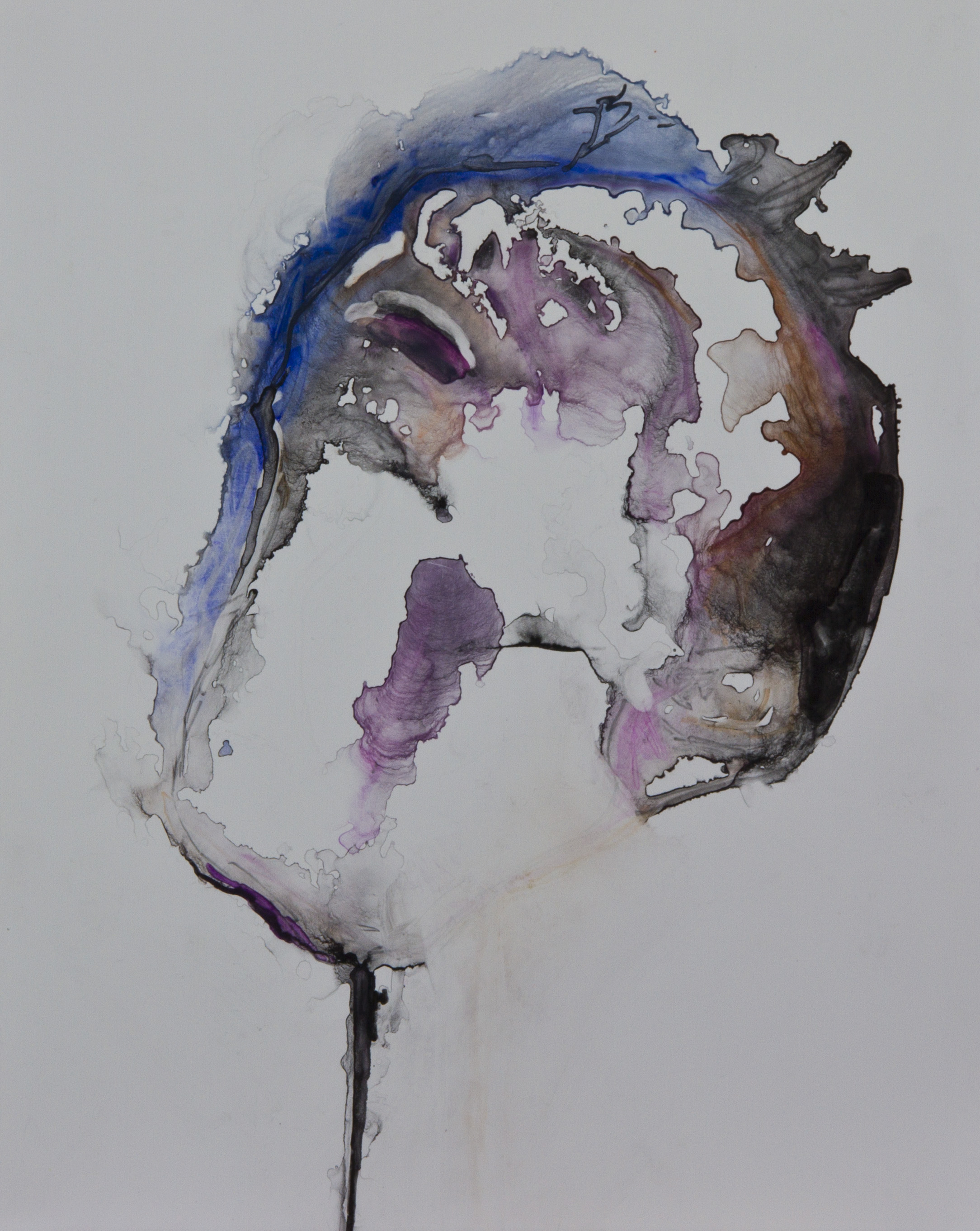 Specimen 1, 2011, watercolor on polypropylene, 11x14 inches