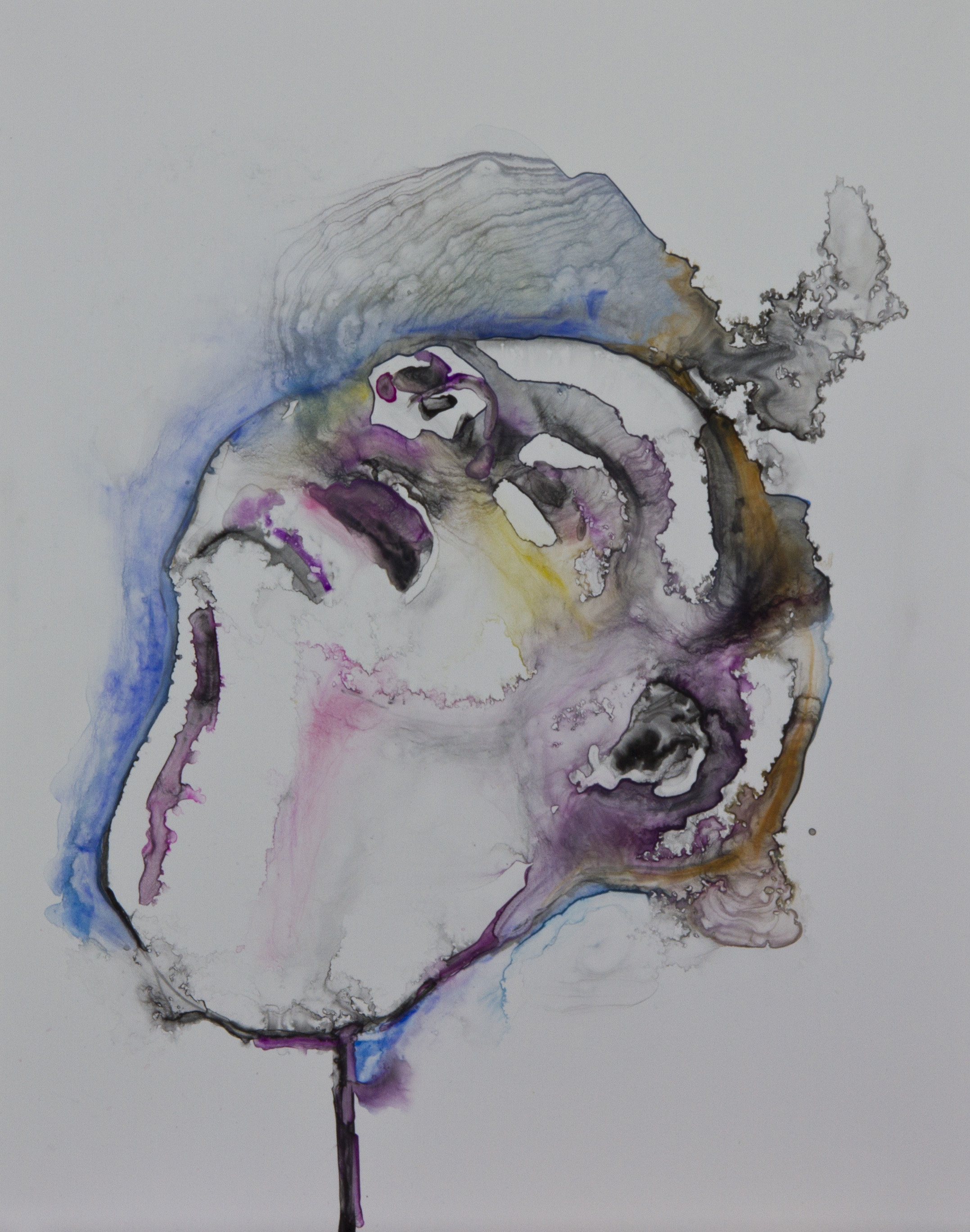 Specimen 2, 2011, watercolor on polypropylene, 11x14 inches