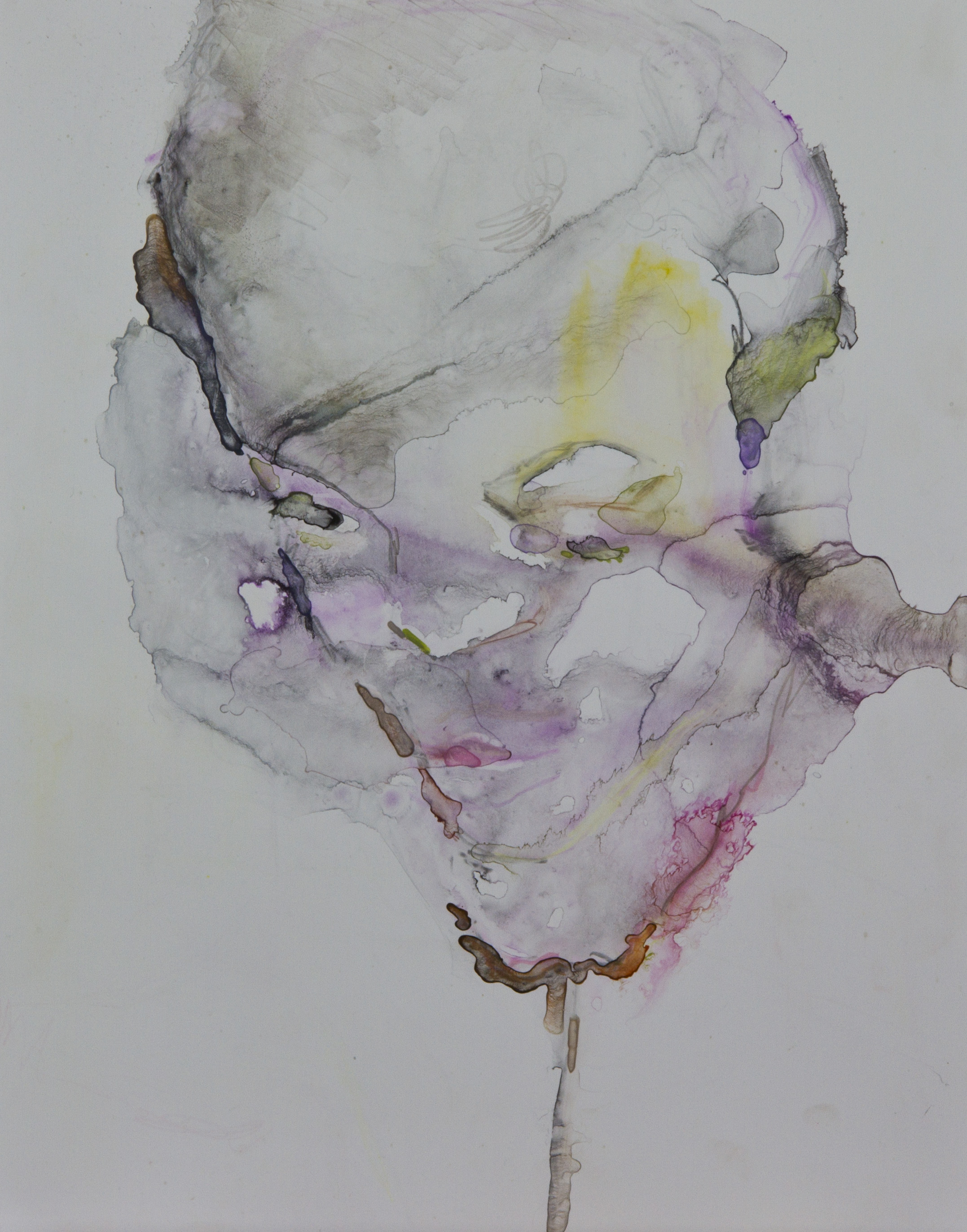 Specimen 7, 2011, watercolor on polypropylene, 11x14 inches