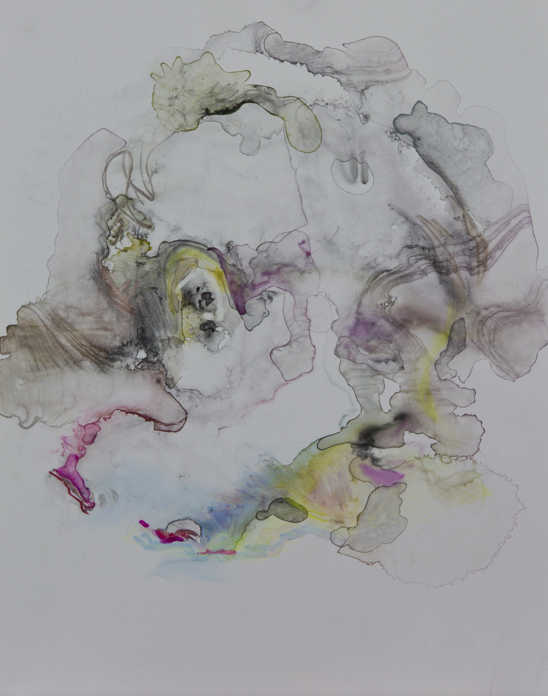 Specimen 8, 2011, watercolor on polypropylene, 11x14 inches