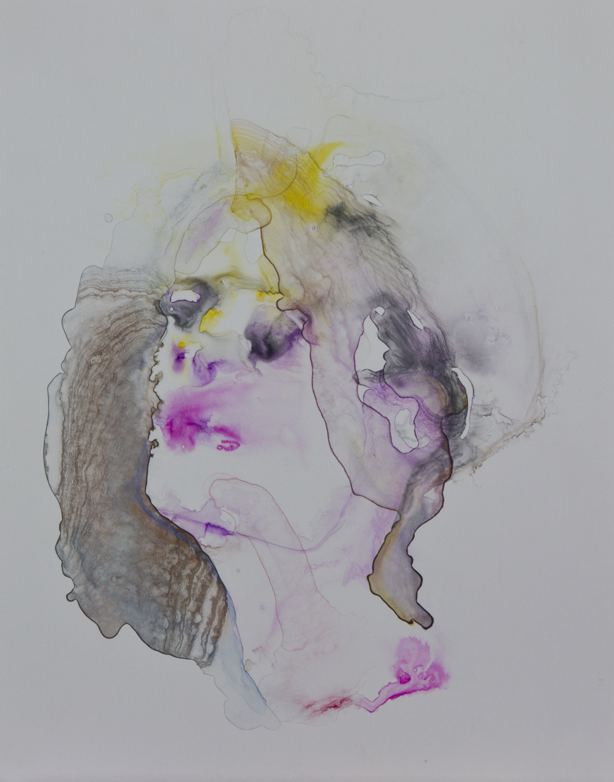 Specimen 10, 2011, watercolor on polypropylene, 11x14 inches