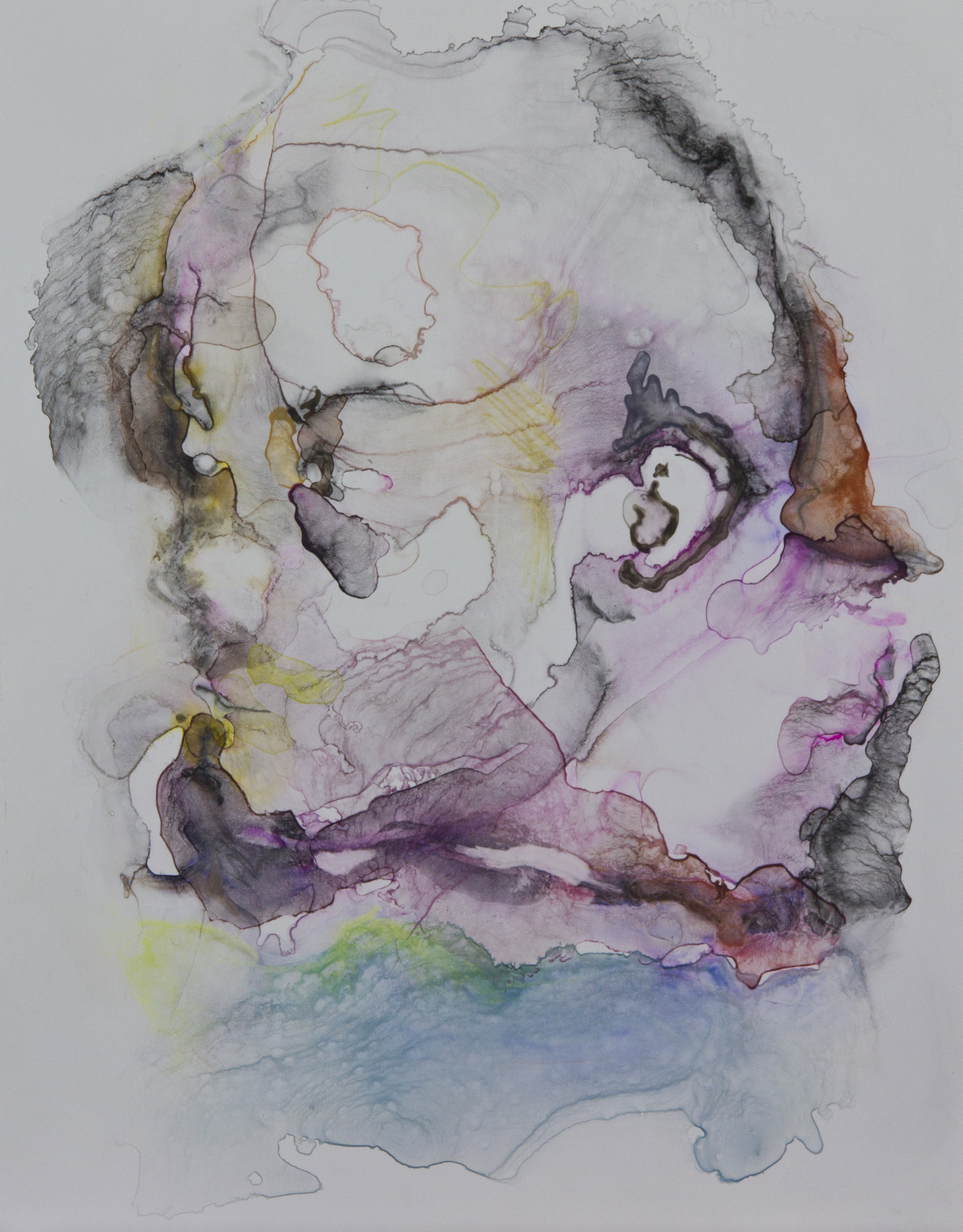 Specimen 11, 2011, watercolor on polypropylene, 11x14 inches