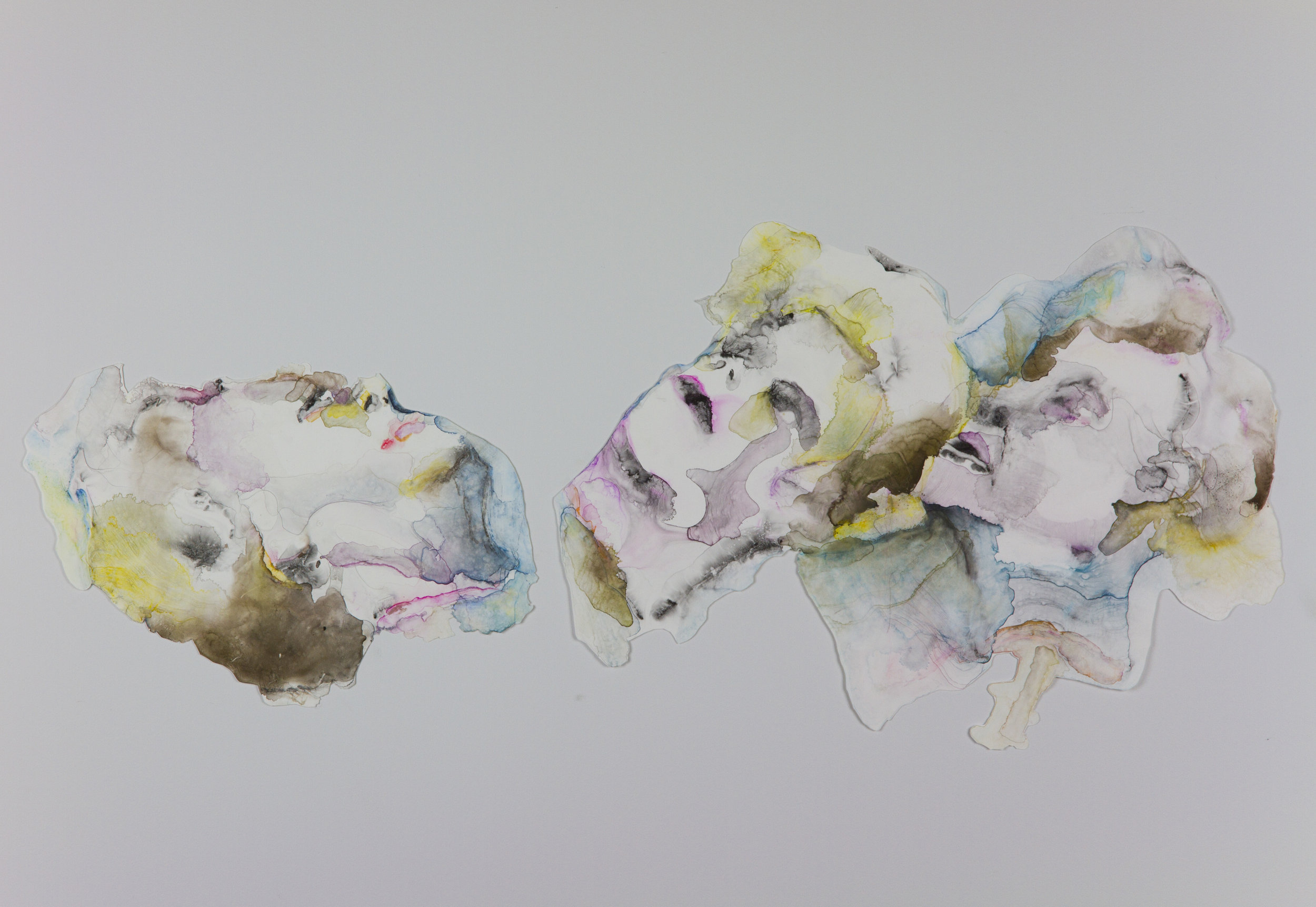Soothsayers, 2011, watercolor on polypropylene, sizes vary approximately 46x30 inches