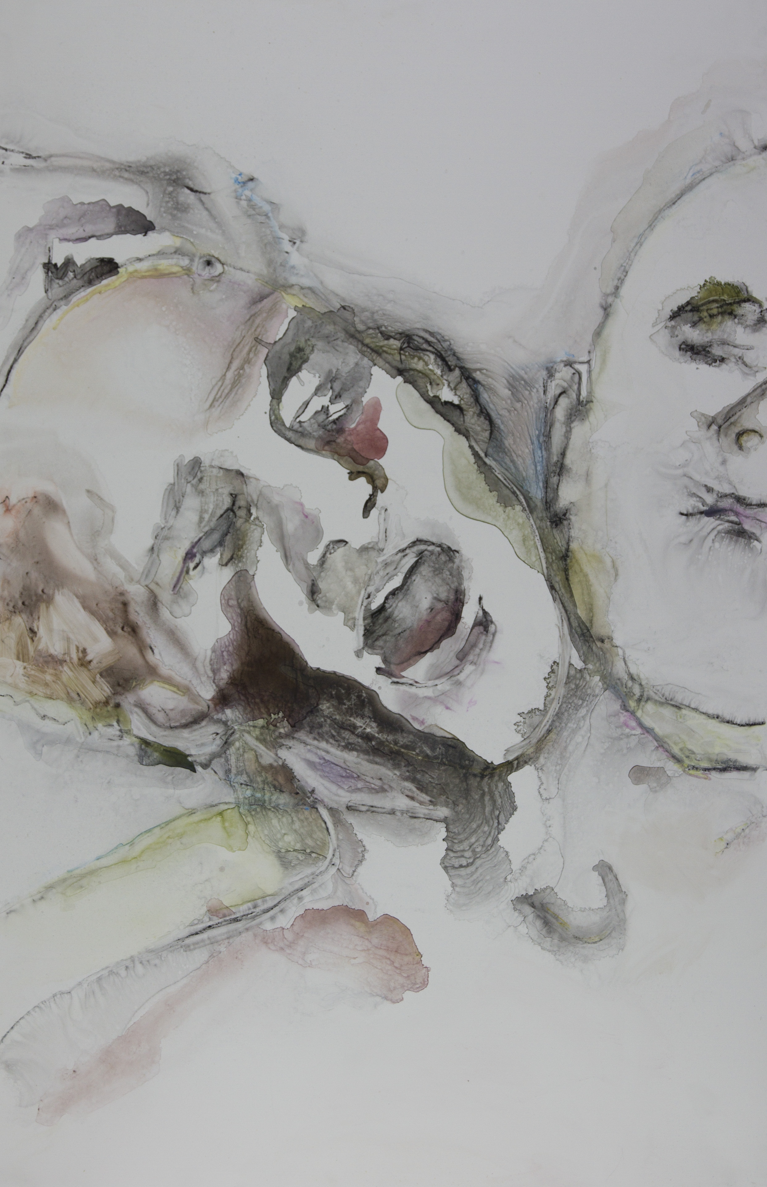 Cause of Your Se Chromosome, 2011, watercolor on polypropylene, 26x40 inches