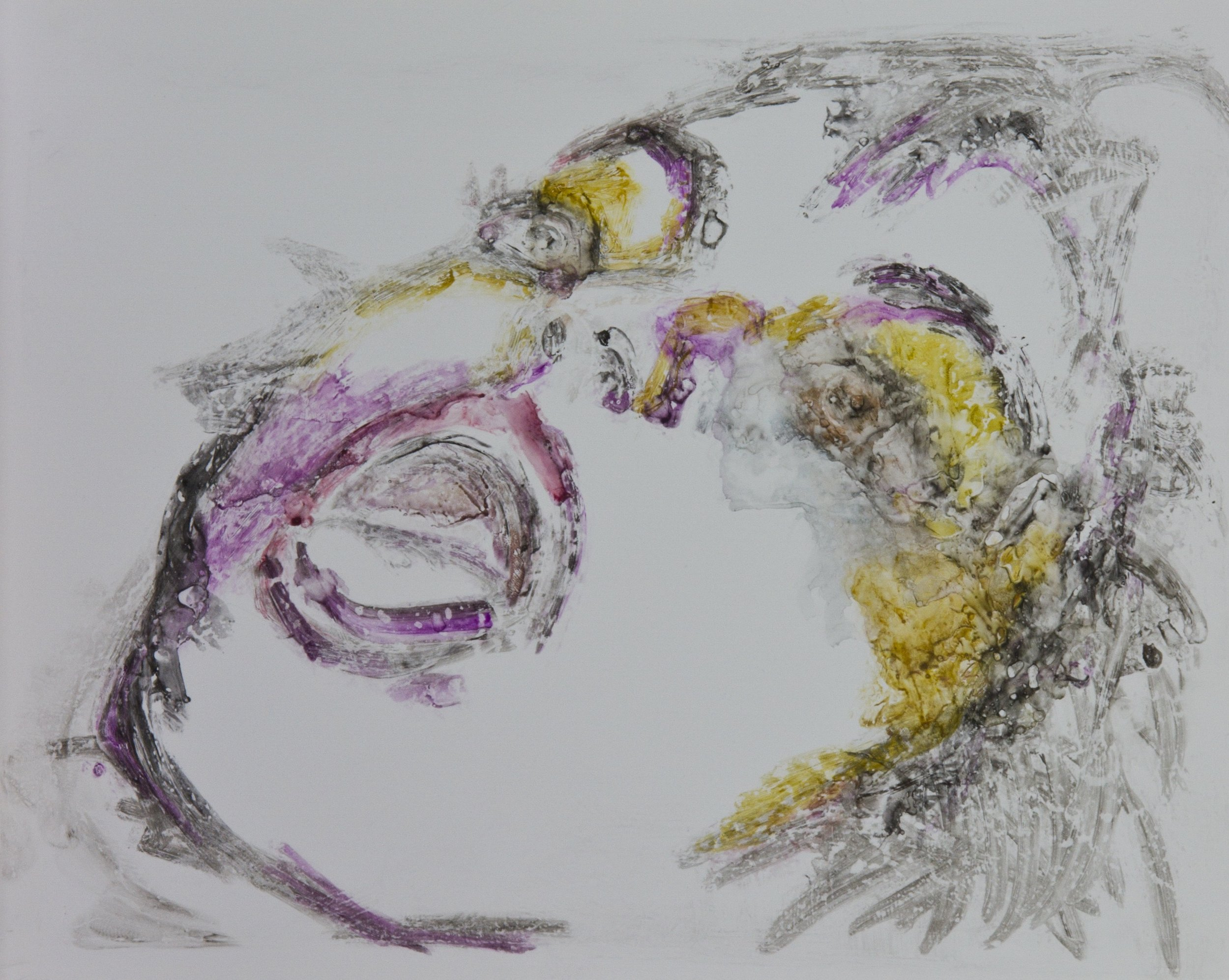 Acts 40, 2010, watercolor monotype on polypropylene, 11x14 inches