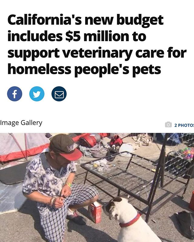 📰This week's GOOD NEWS 📰  The 2019-20 budget that went into effect on July 1st, includes $5 million in grants to fund veterinary and other care for people experiencing homelessness with their pets.   The money will go toward placing veterinarians at qualified homeless shelters to allow those living on the streets to get care for their pets! - read more via @foxla