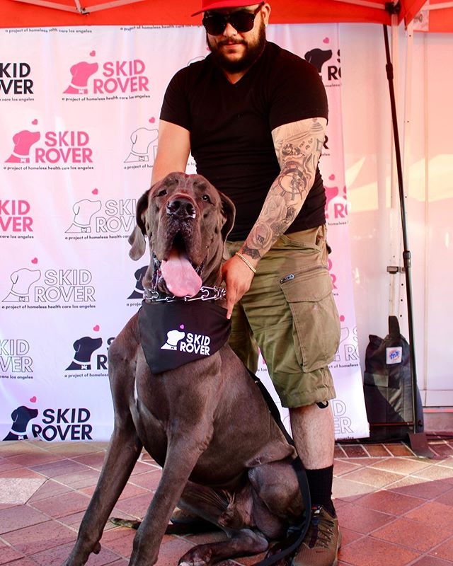 Happy Fetchback Thursday from the 13th annual Dog Day @figat7th with lovable gentle giant @biggie_greatdane 🎉  Our Skid Rover bandanas are for pets and people too! Now available at the link in our profile. 🐶