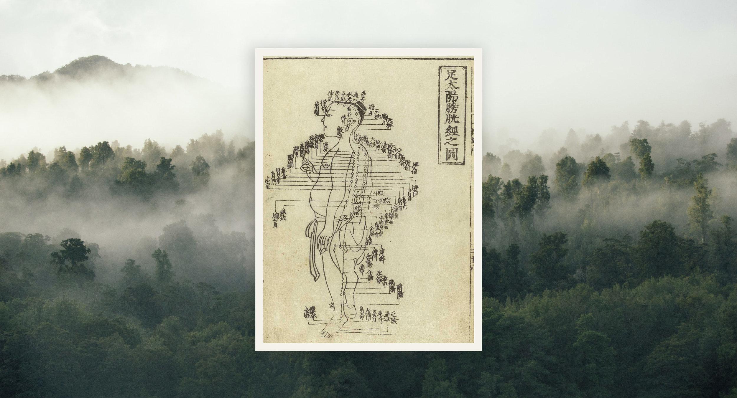 Acupuncture chart from Hua Shou (fl. 1340s, Yuan Dynasty). This image from Shi si jing fa hui (Expression of the Fourteen Meridians). (Tokyo: Suharaya Heisuke kanko, Kyoho gan 1716).