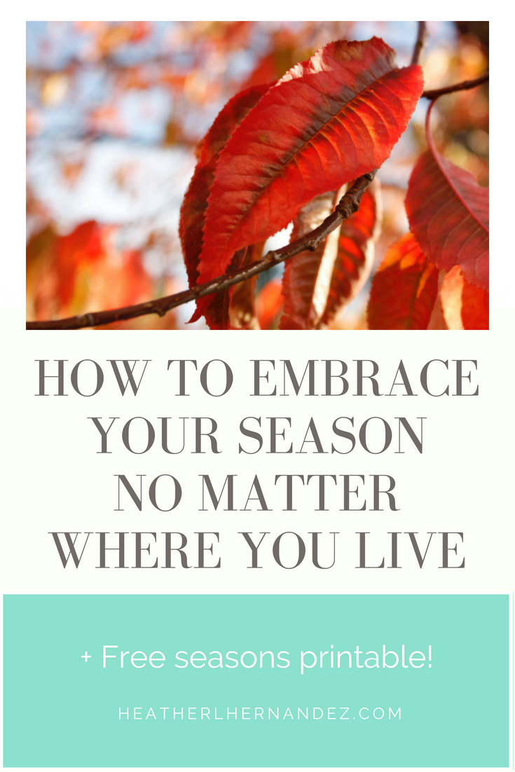 How to embrace your season no matter where you live