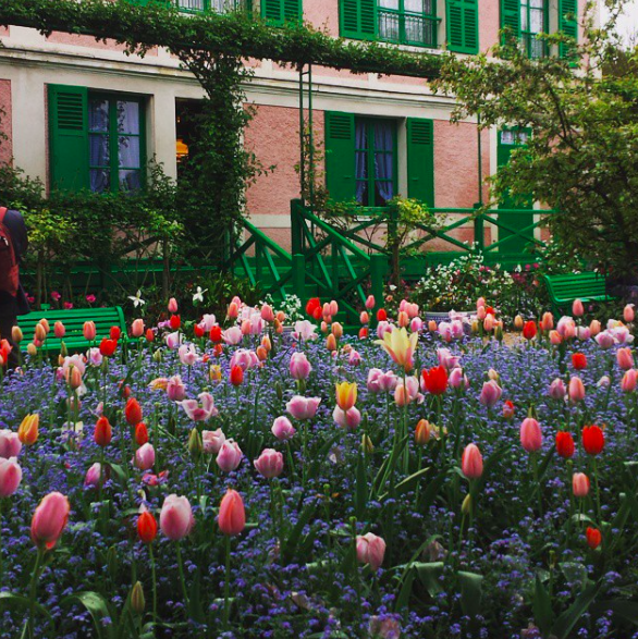 Monet Garden Tulips House