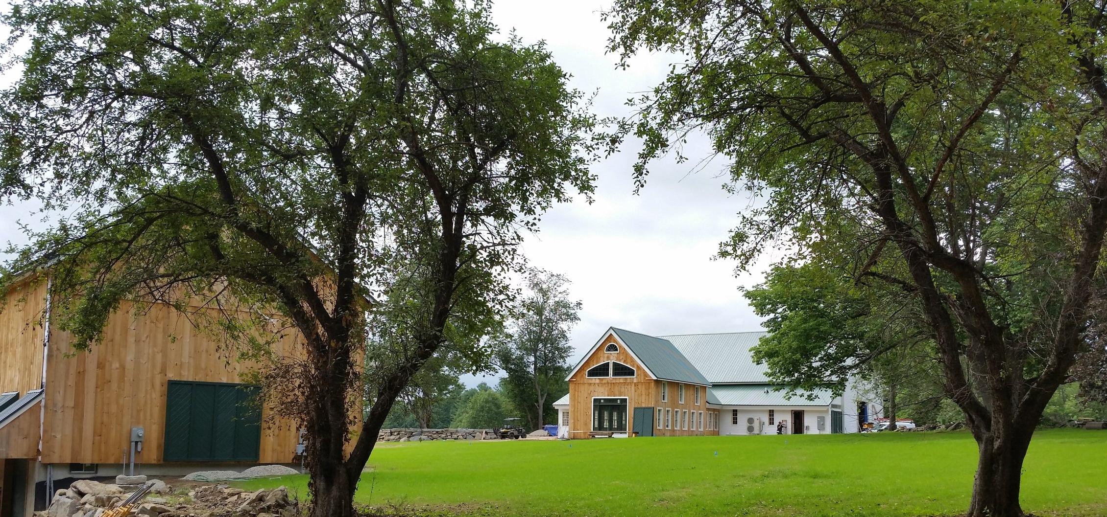 2 barns 2 trees.jpg