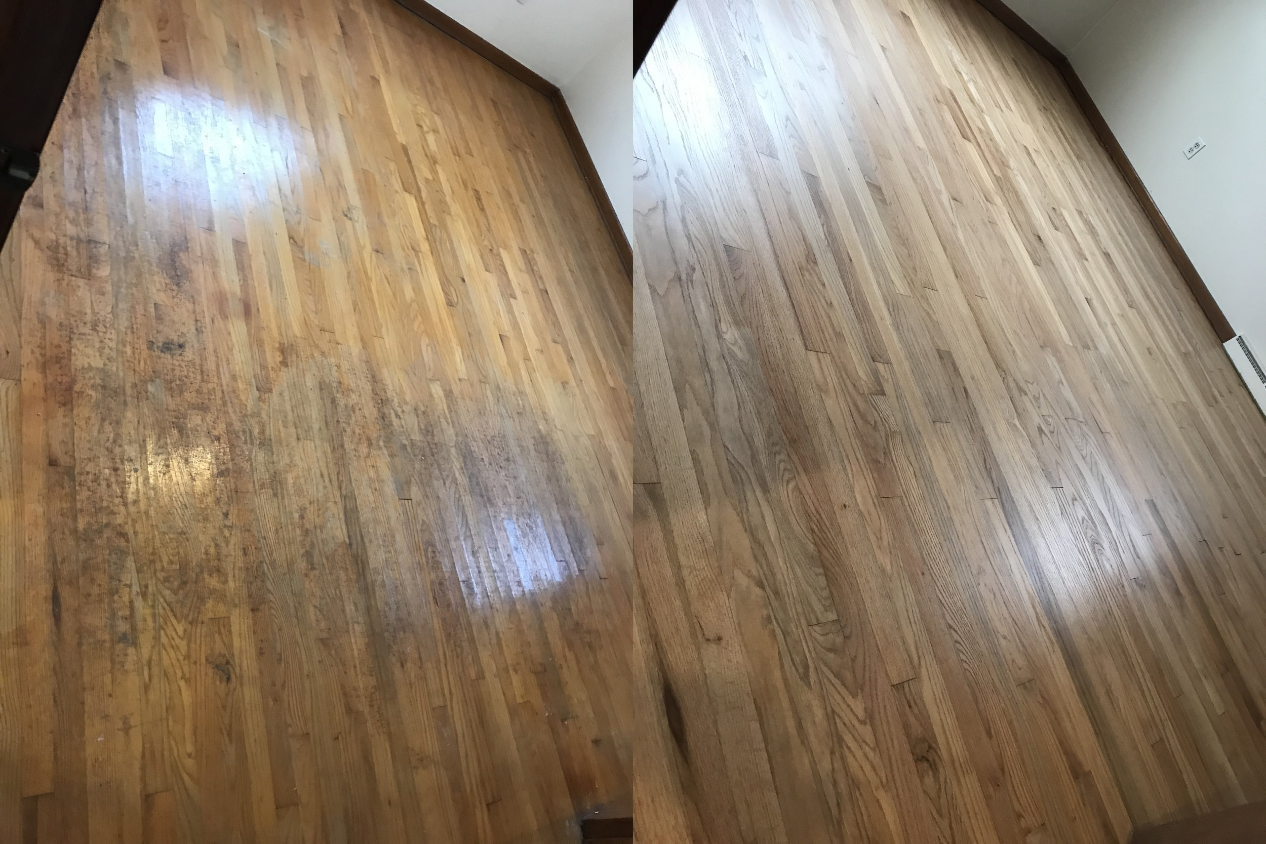 White Oak Wood Floor Refinish