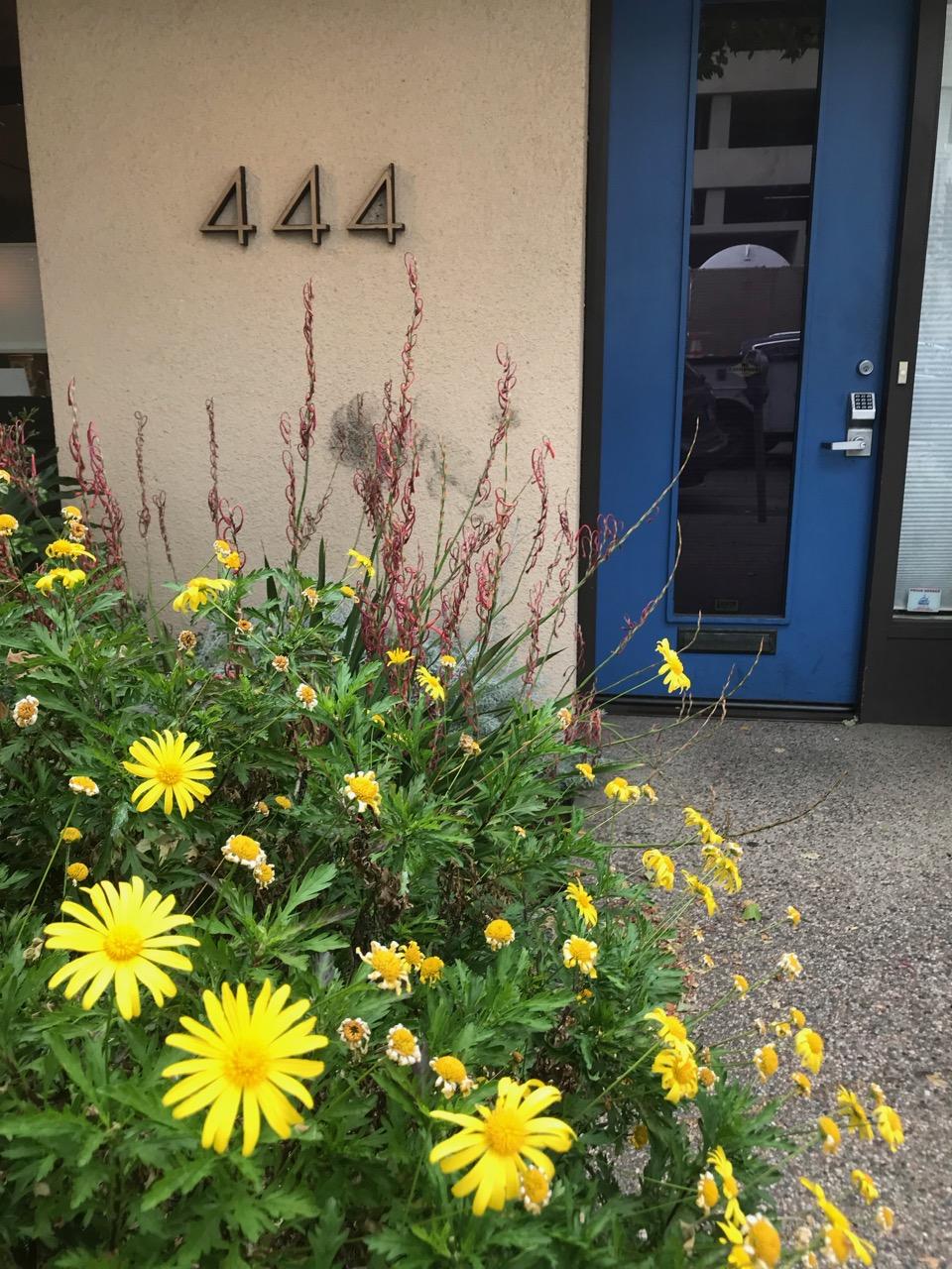 therapy-office-front-door.jpg
