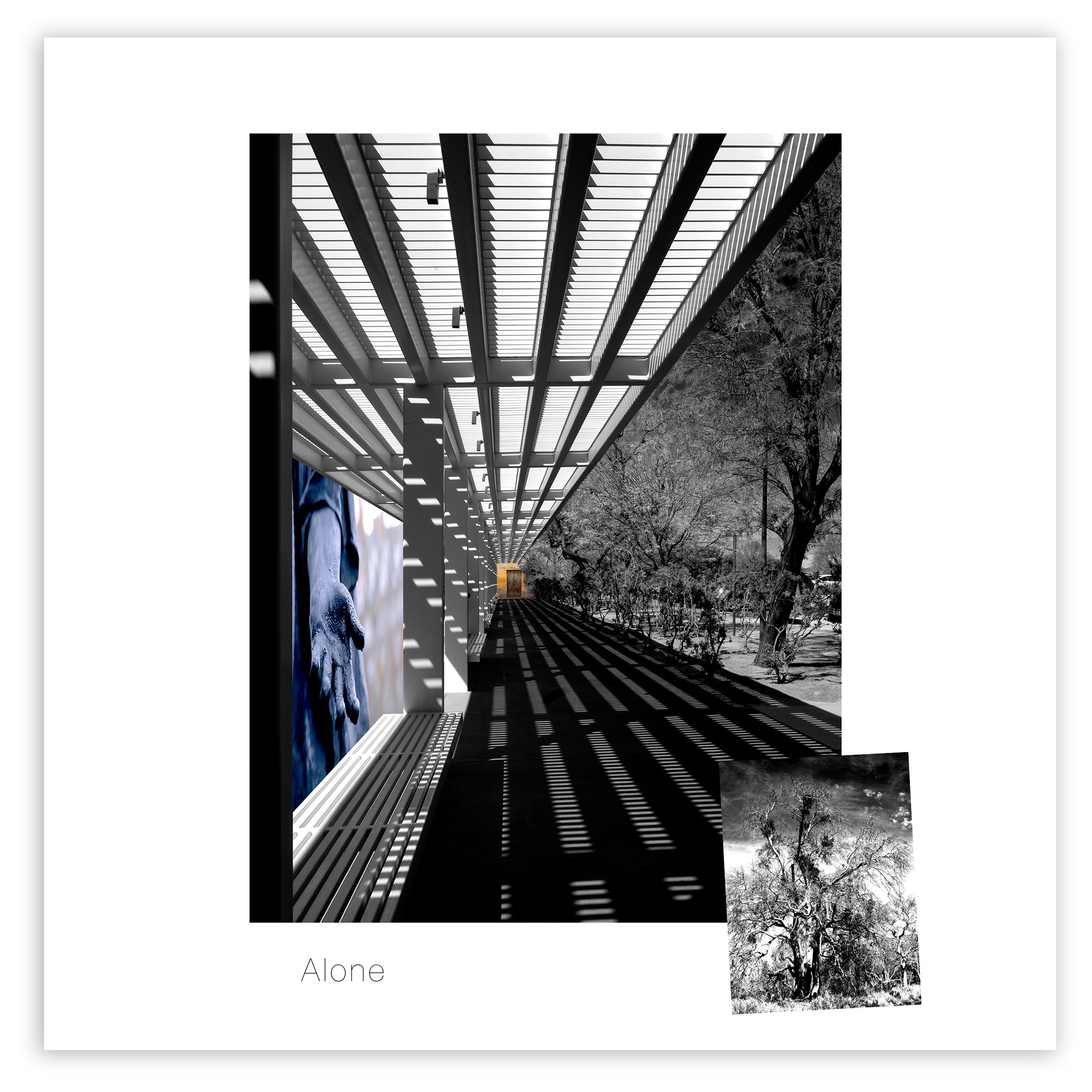 Alone8x8_cover.jpg