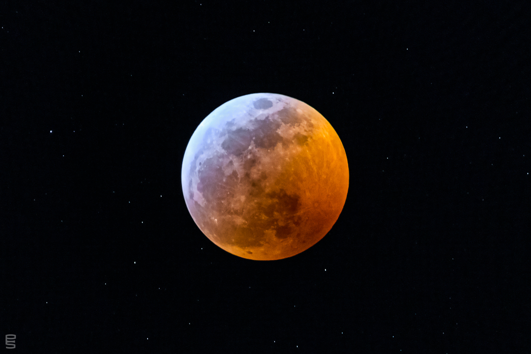 Lunar Eclipse of 2019 — Super Blood Moon.  With cloud cover and rain in the Bay Area last night, I had given up on a photo. But the sky suddenly opened up for about five minutes. I practically tripped over myself racing and fumbling to get my gear outside in time, tripod and all. Five minutes and only six frames later, the moon disappeared behind the clouds again.