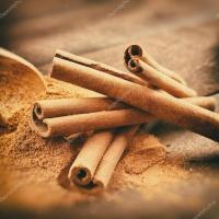 depositphotos_40455443-stock-photo-vintage-stylized-photo-of-cinnamon.jpg