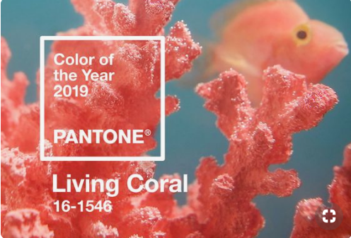 COLOUR OF THE YEAR - Find wedding inspiration for everything living coral- Pantone's colour of the year.