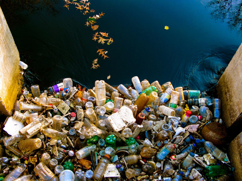 DPI_2nd_Social Documentary_Stop Plastic Ahead_Roschelle Don_ABgr