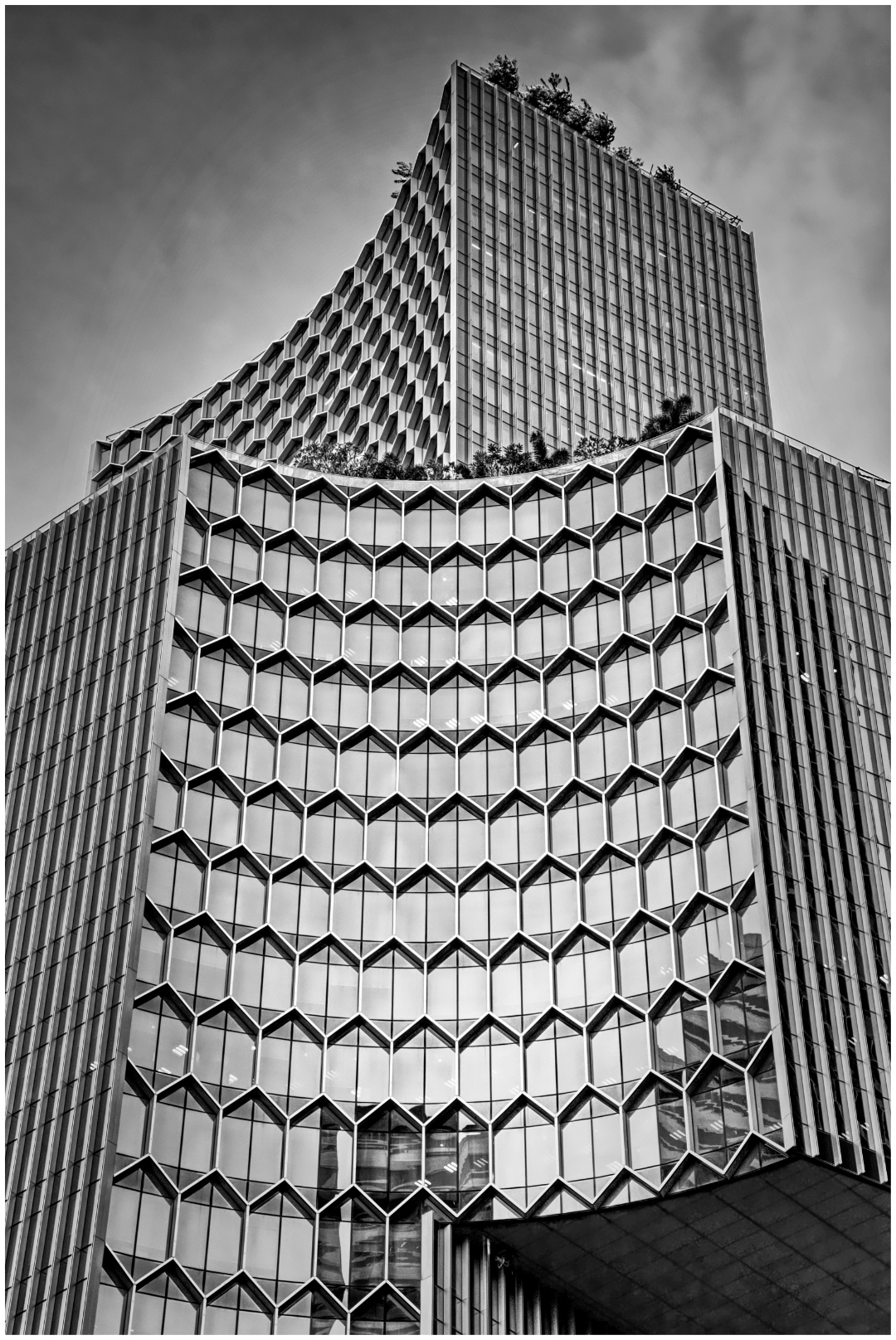 Architecture_Curved Shapes_P Moodie_Bgr_Honour