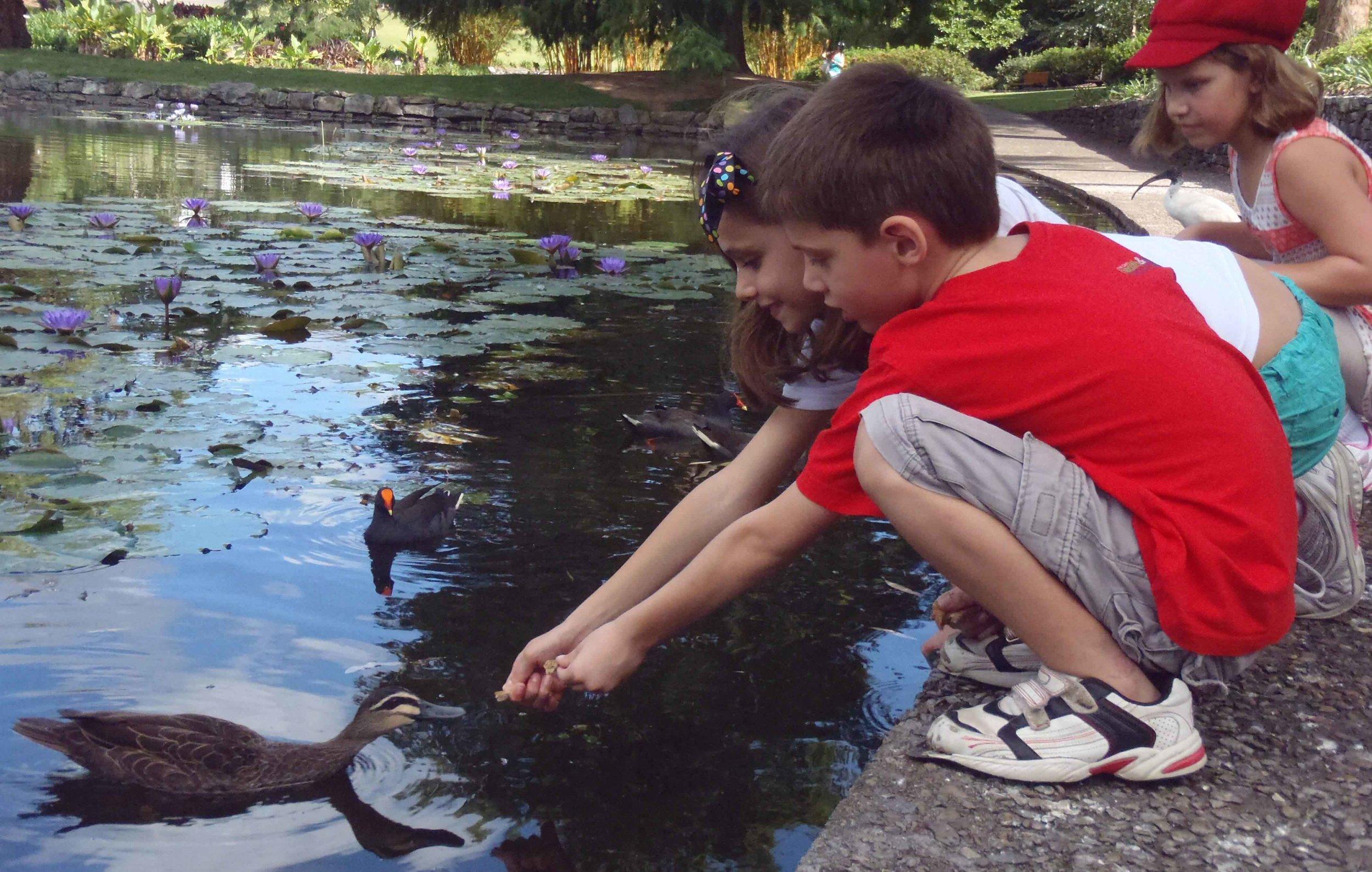 People DPI_Children feeding the ducks_Carol Clark_B Grade HONOUR