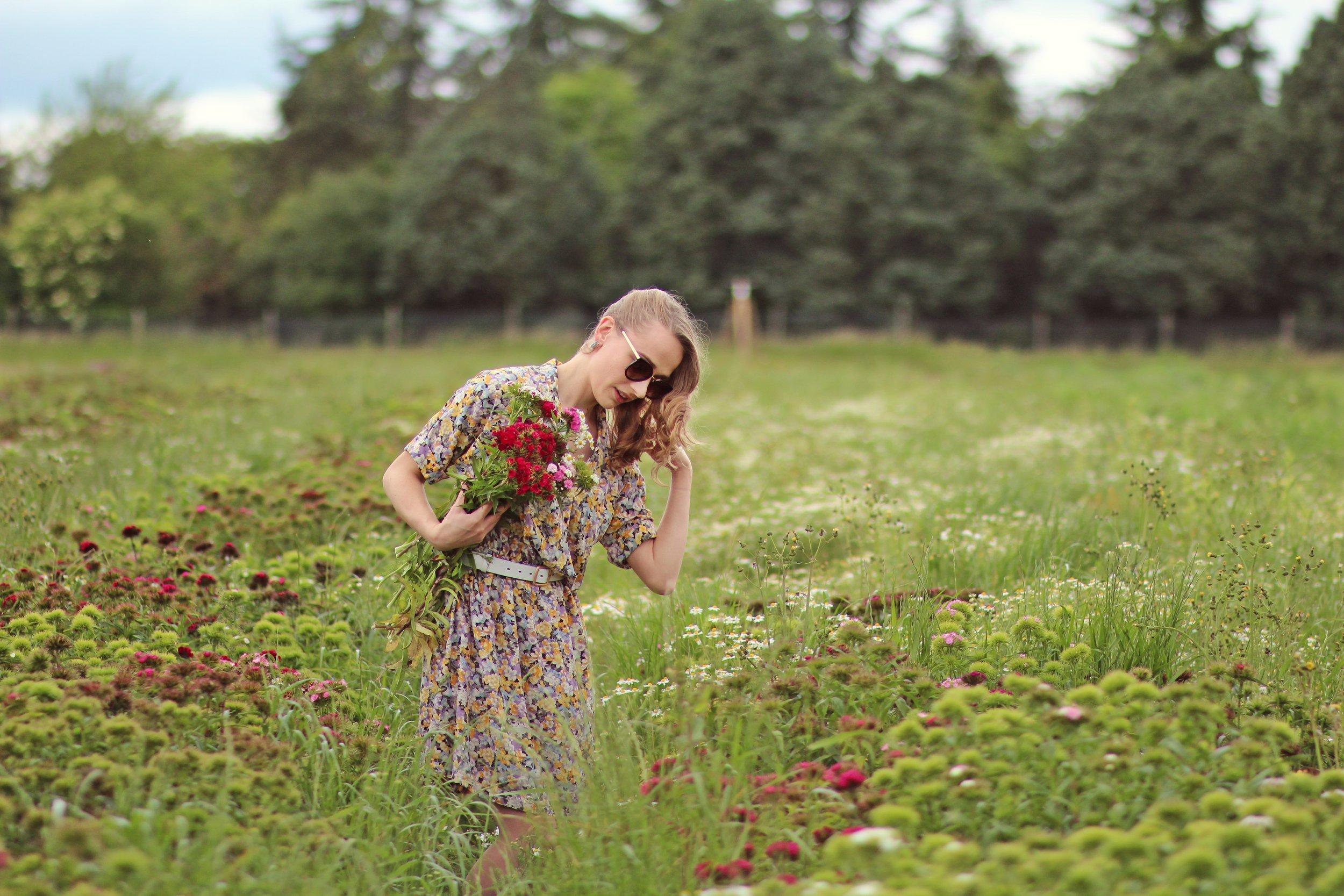 Cueillette Gally: cueillir champs fleurs oeuillets