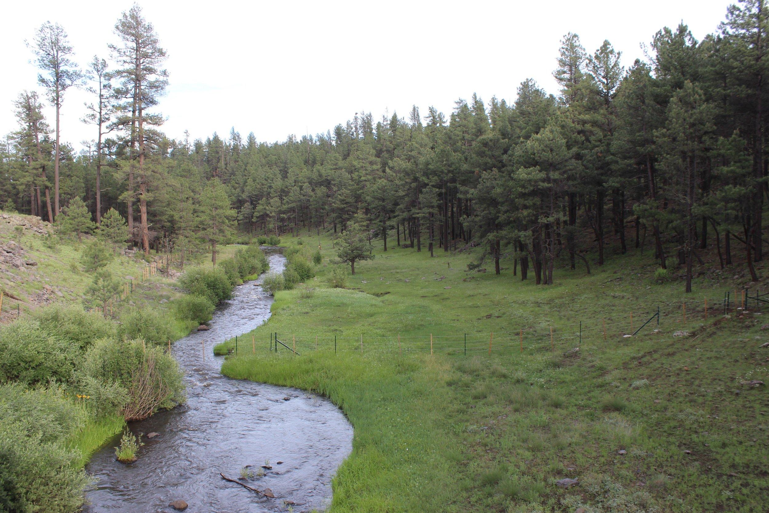 West Fork Black River.JPG