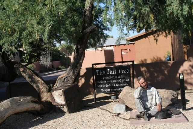 The Jail Tree at Tegner & Center