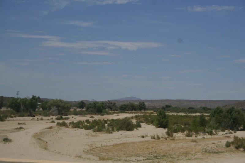 The Hassayampa River in Wickenburg, AZ