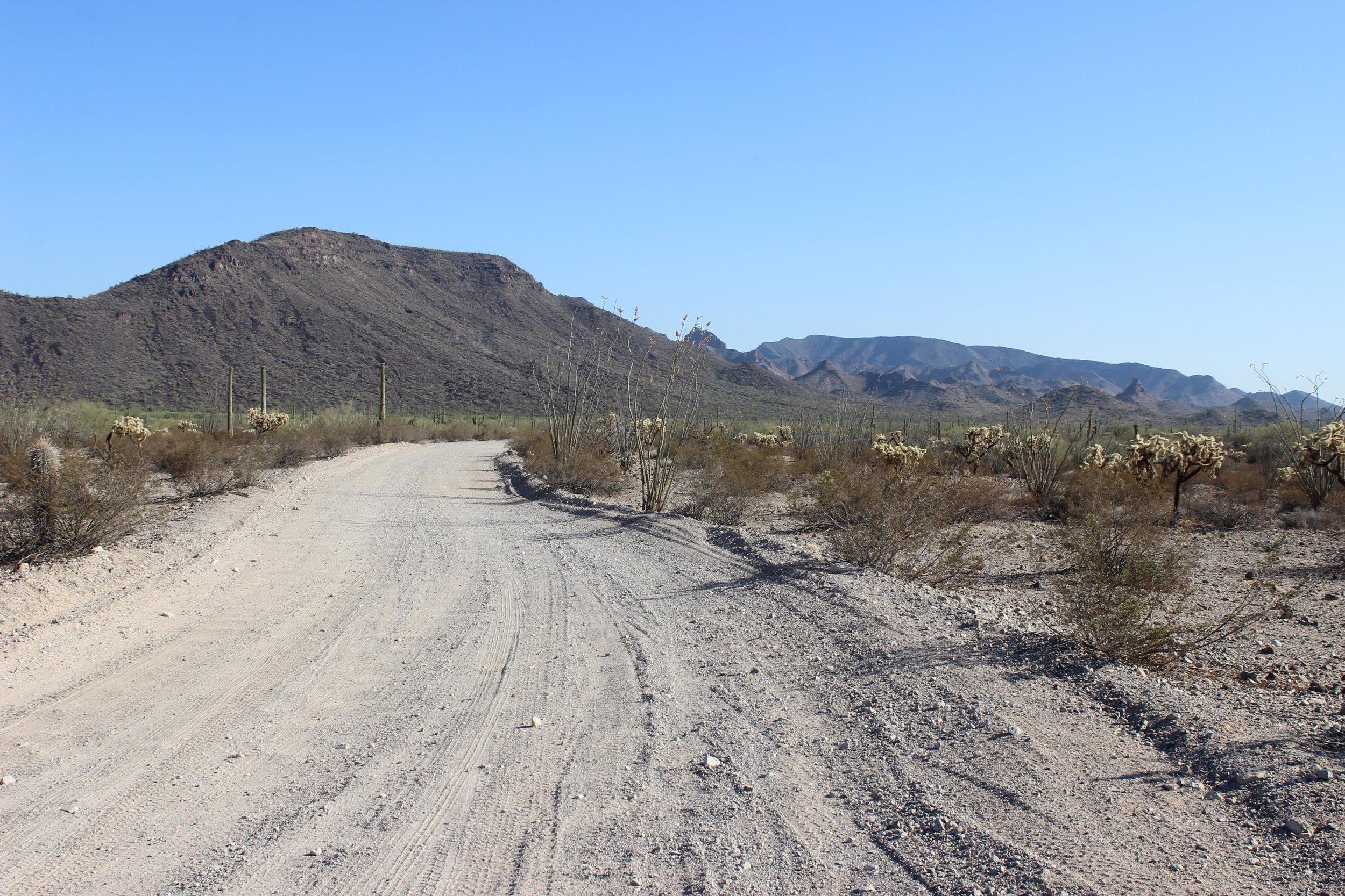 El Camino heading south towards the Bates Mountains