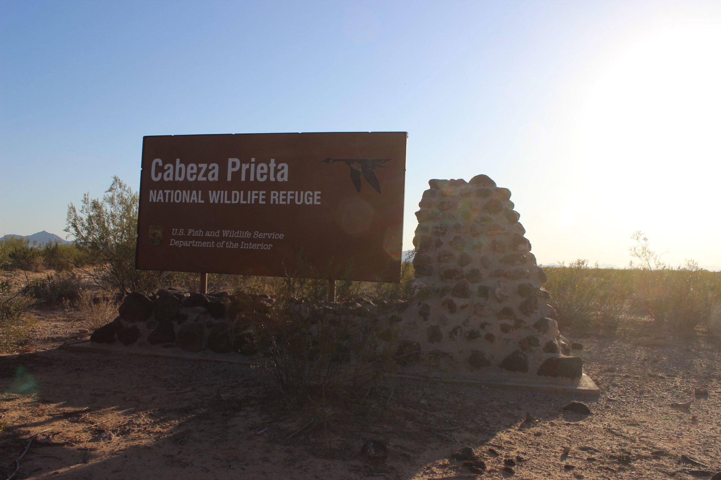 Crossing into Cabeza Prieta NWR.