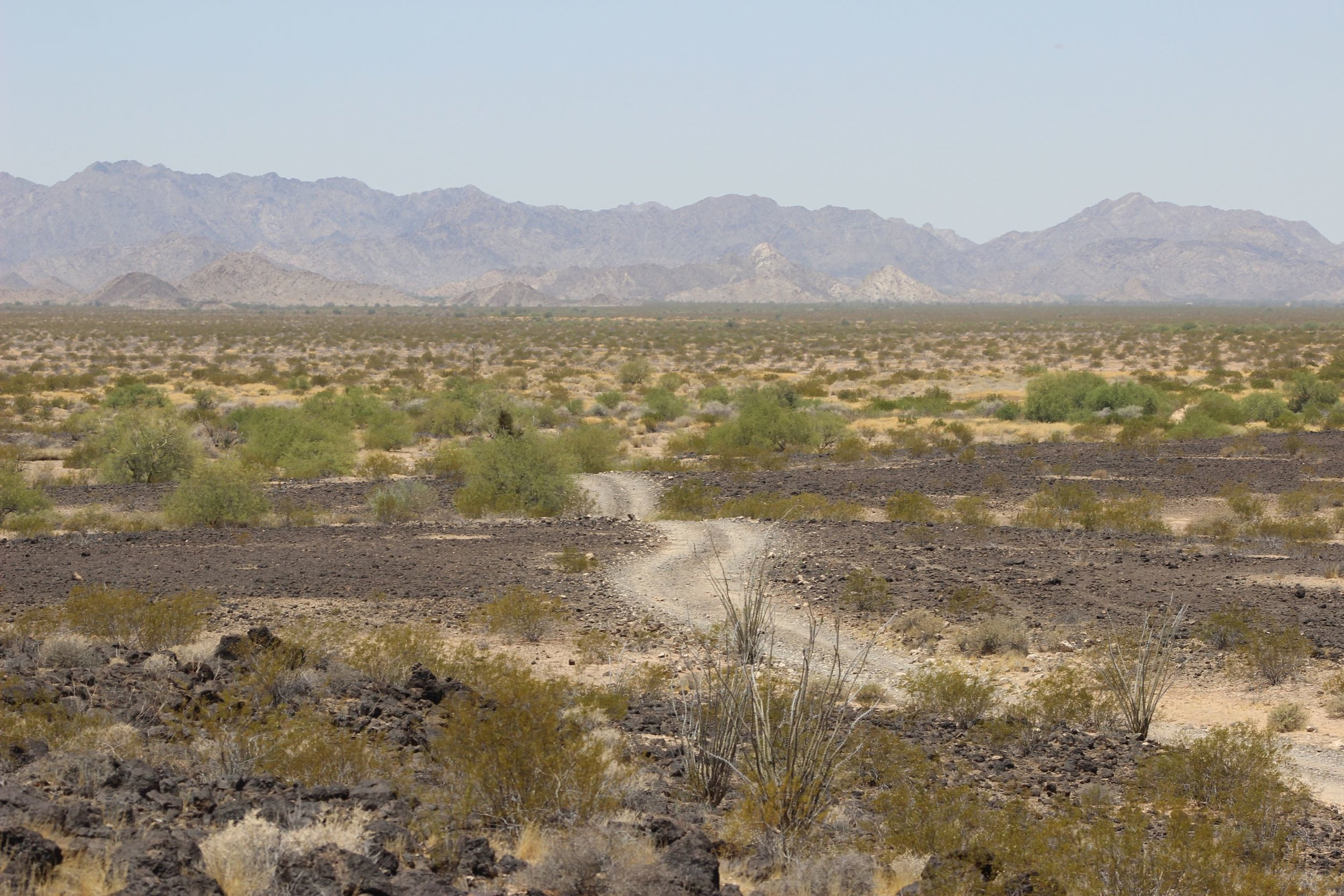 El Camino heading west out of Pinacate Lava Flow.
