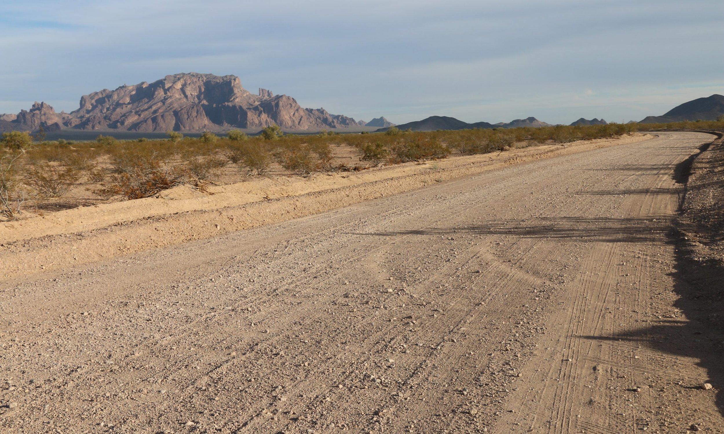 Palm Canyon Trail.JPG