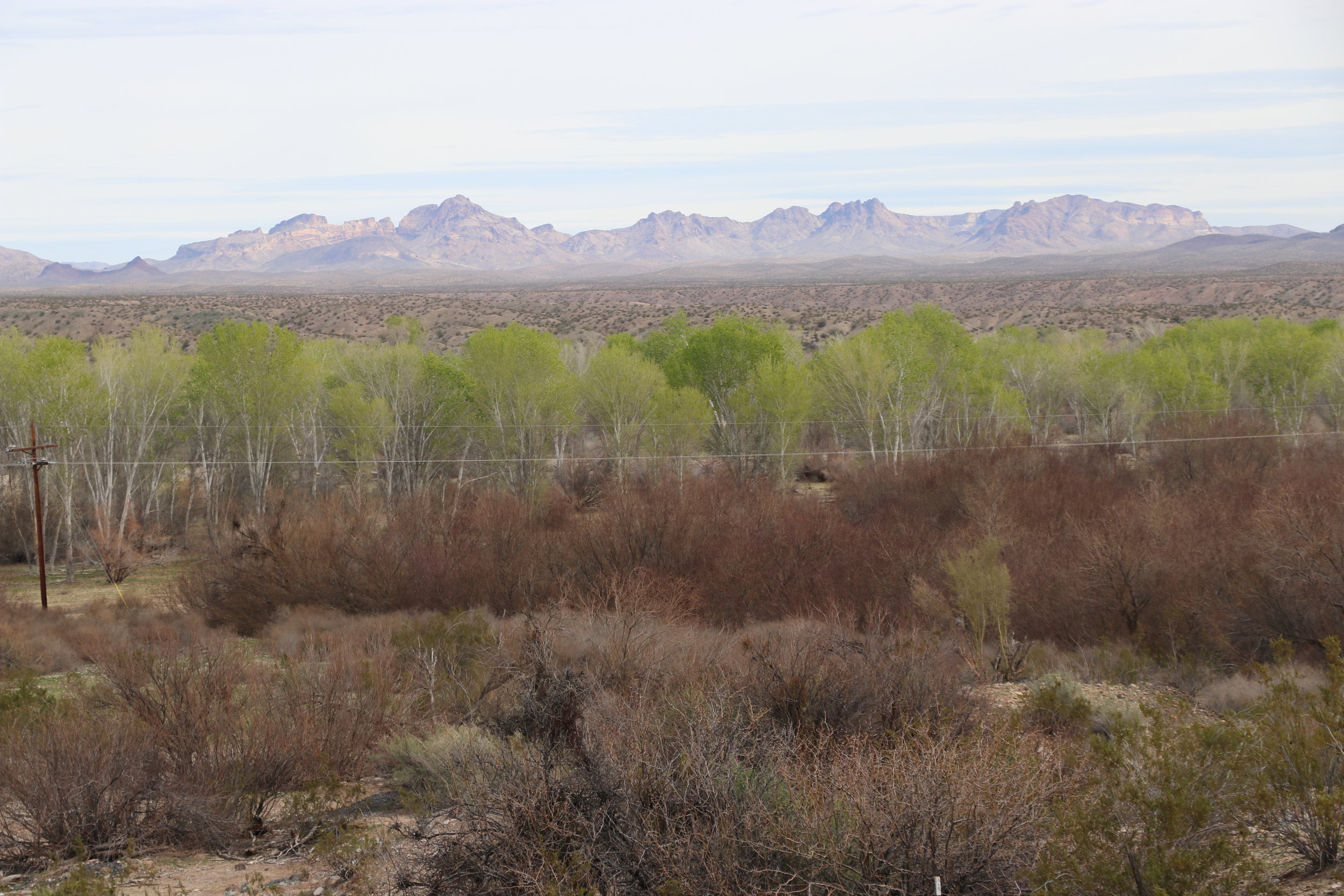 Looking north from Planet, across the Bill Williams River Valley.