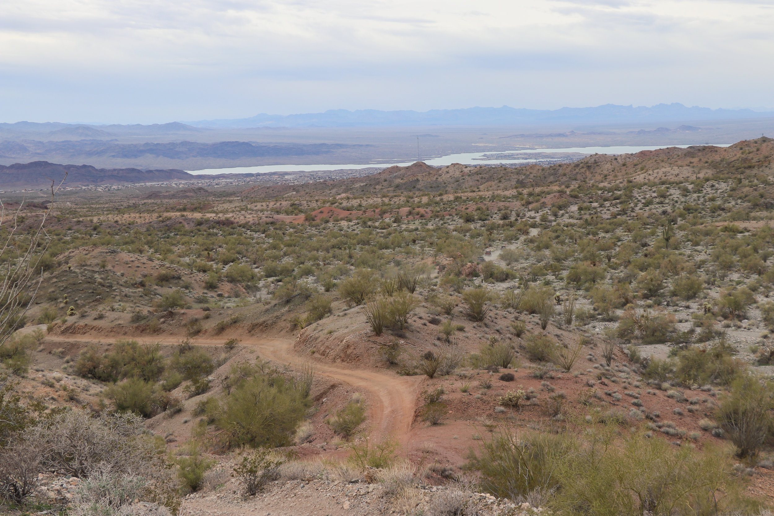 Overlooking Lake Havasu City from along the trail.