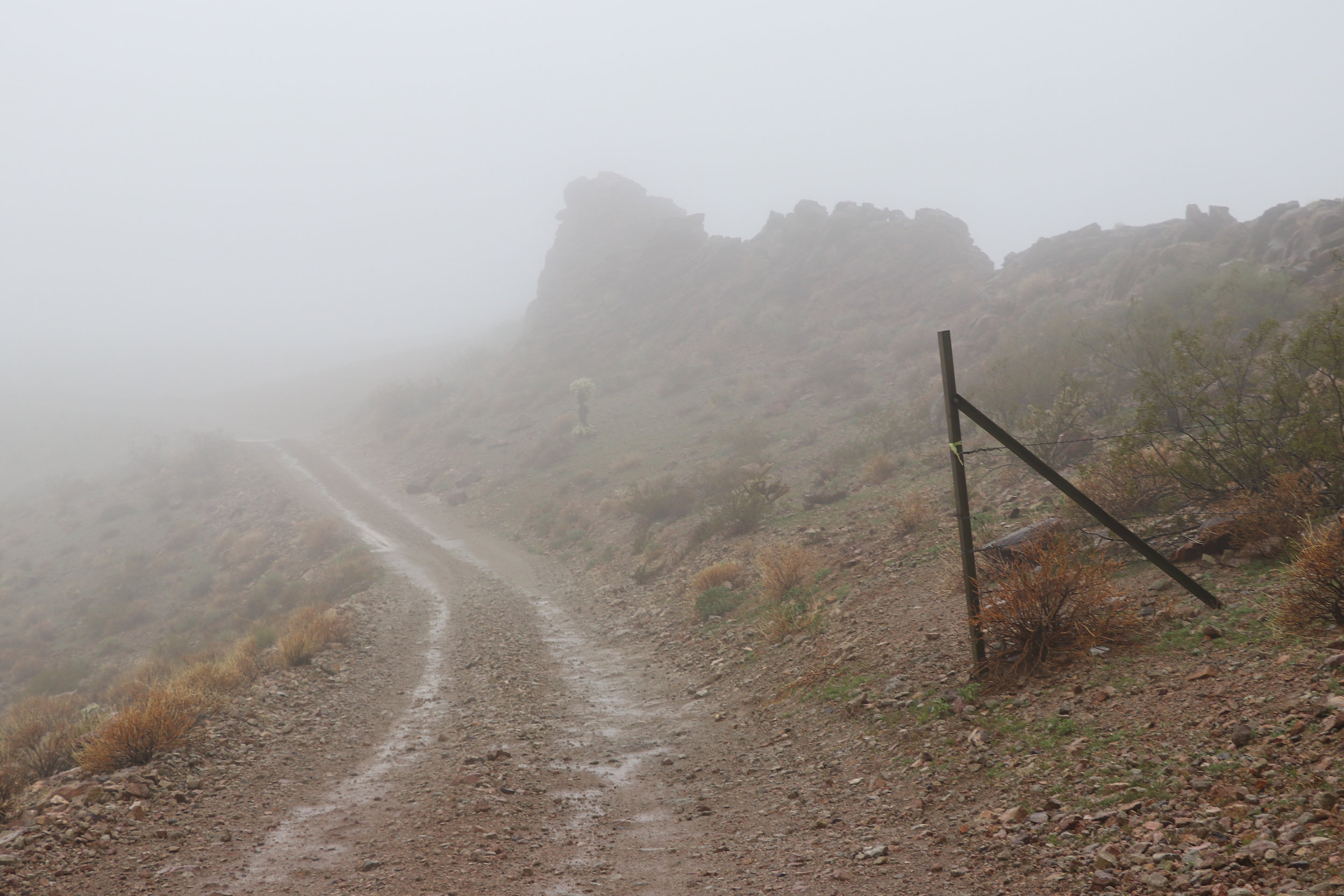 The fog was very thick by the time reached County Highway 1.