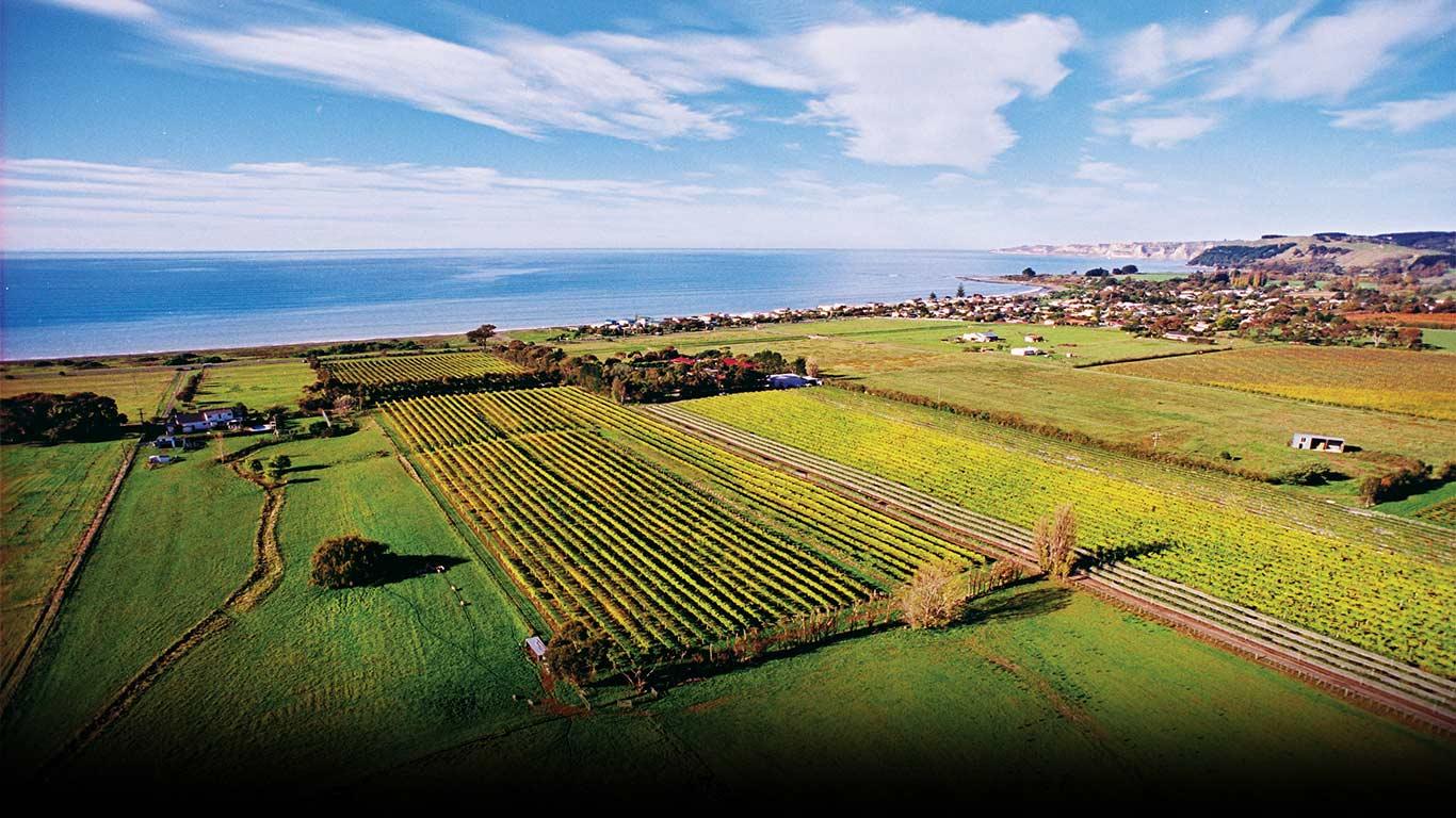 clearview estate wine.jpg