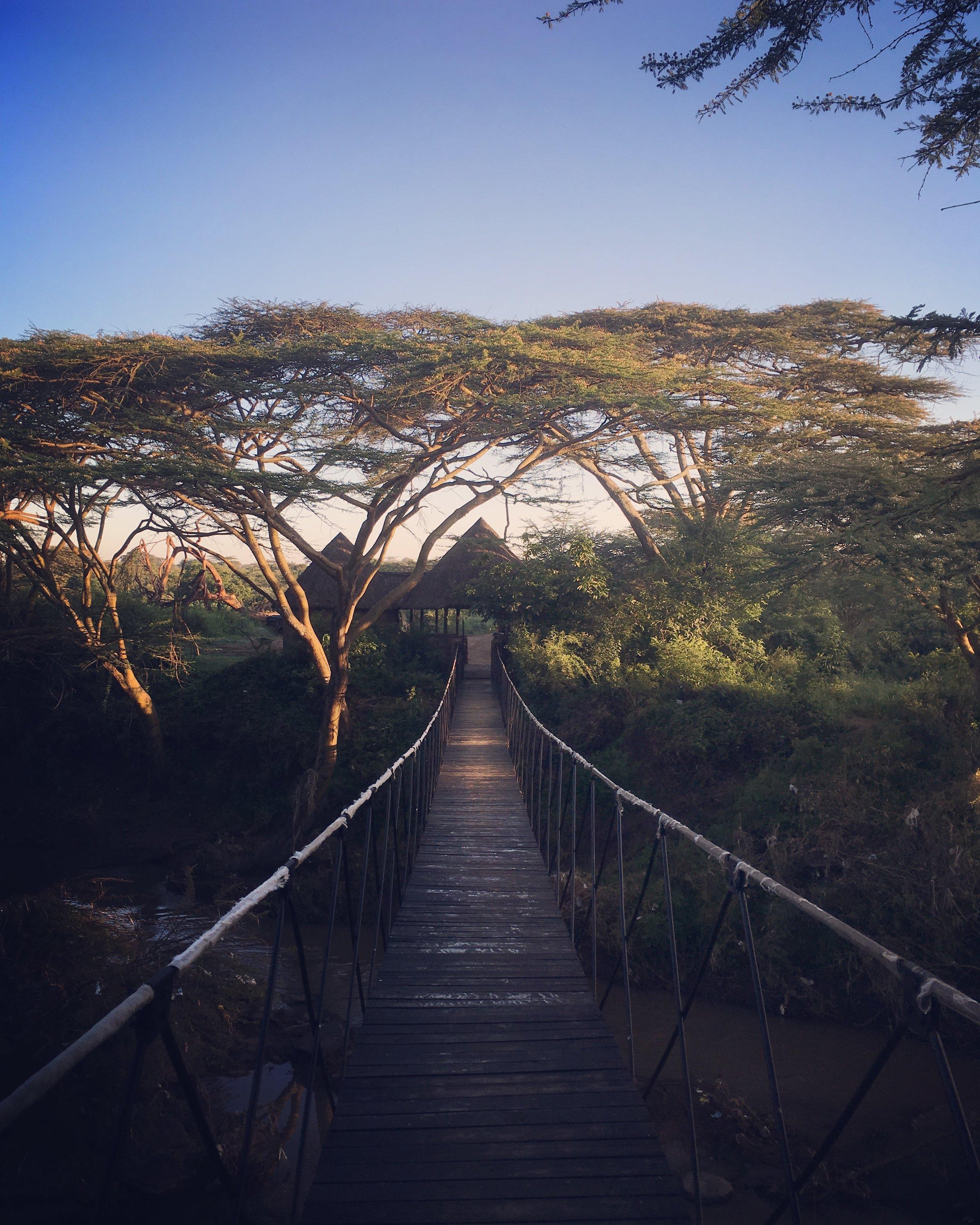 Ololo Safari Lodge Nairobi National Park