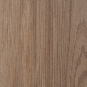 Hickory Work Surface