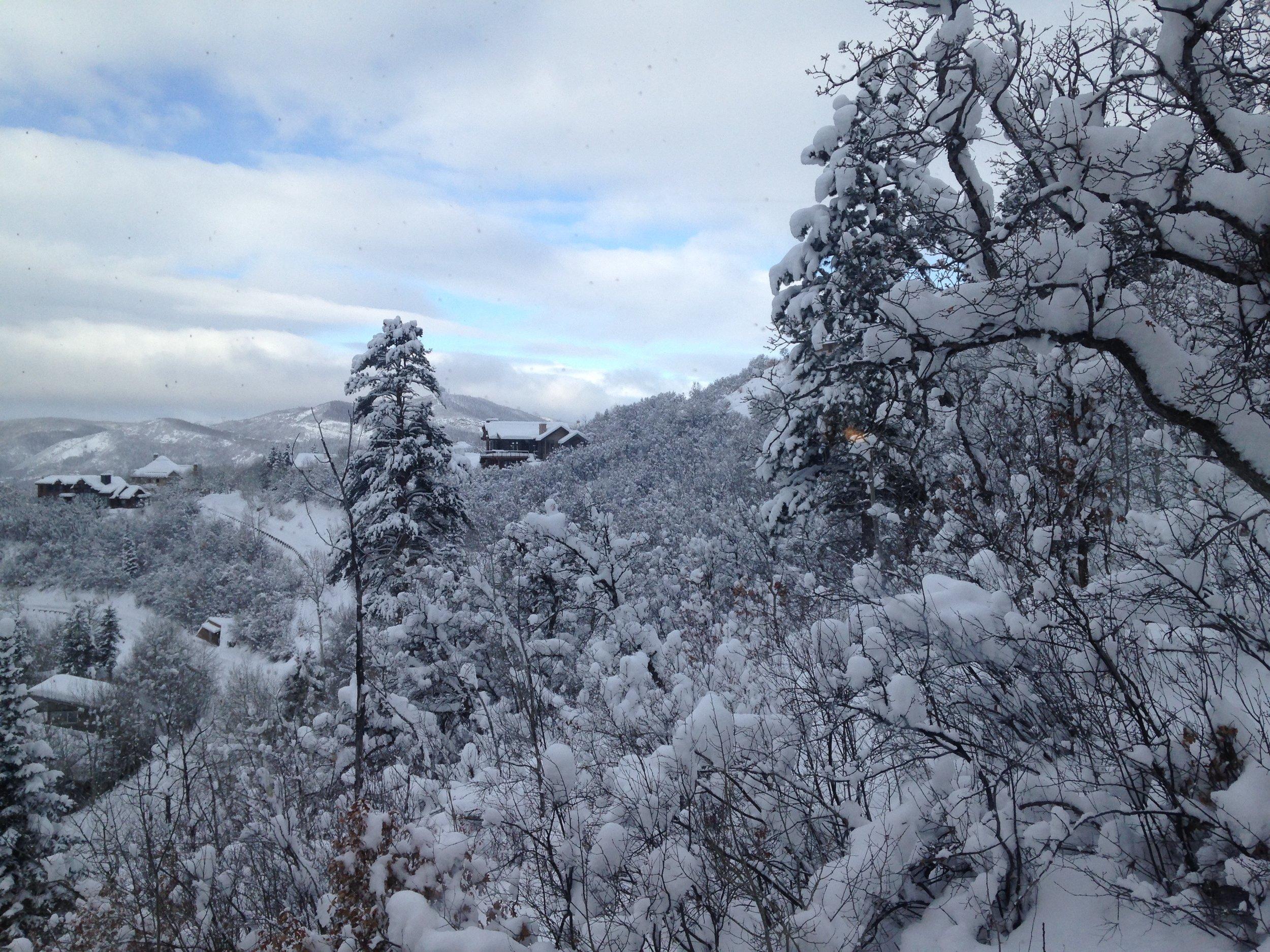Snowshow Winter Wonderland 2