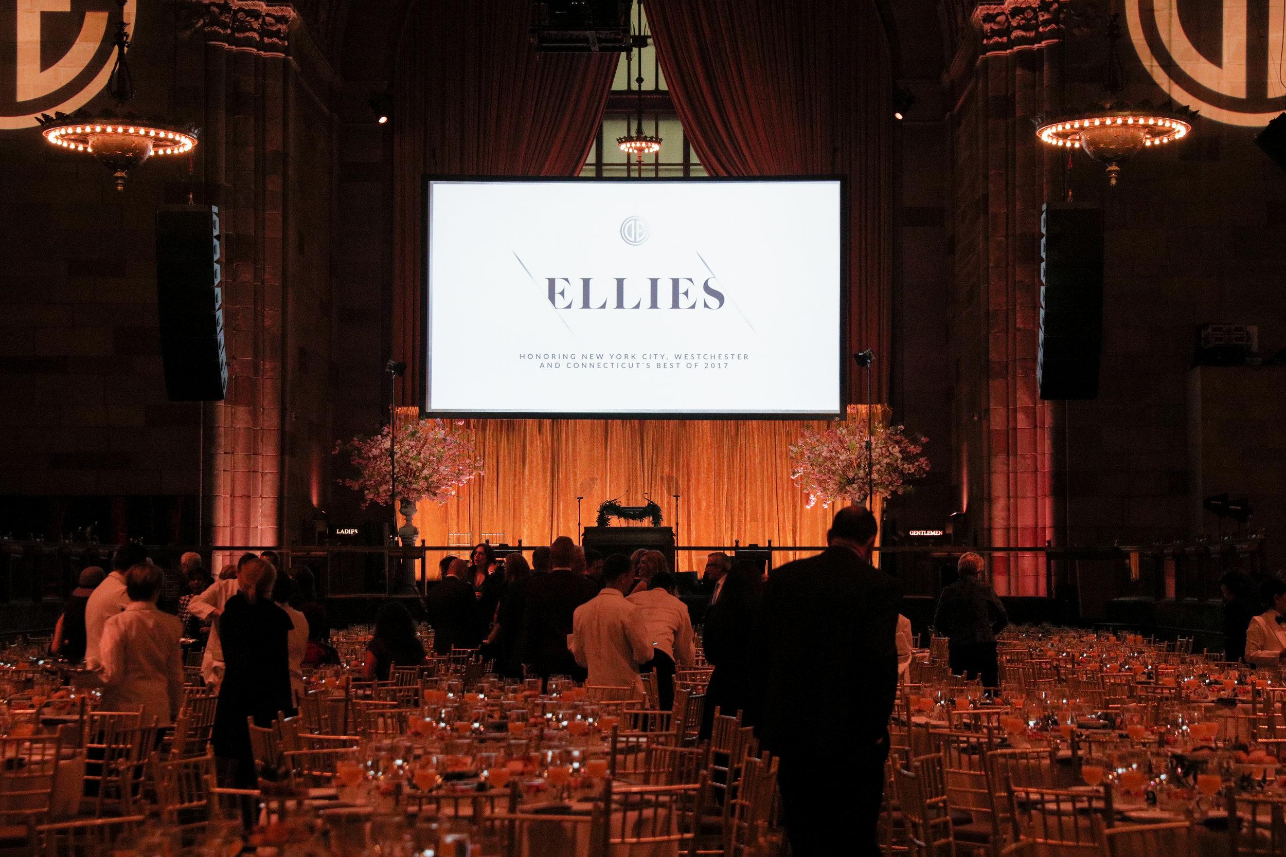 Ellies Presentation