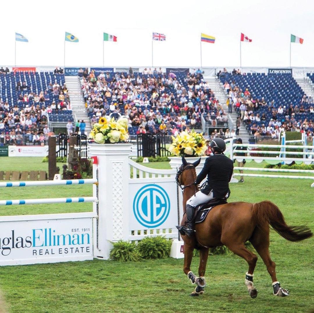 equestrianjump1