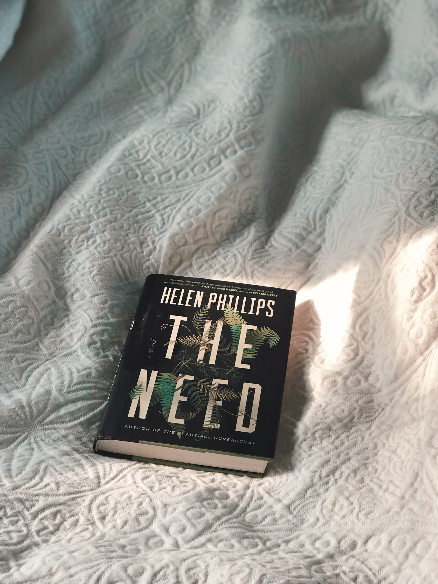 The Need  by Helen Phillips. Photo by Write or Die Tribe