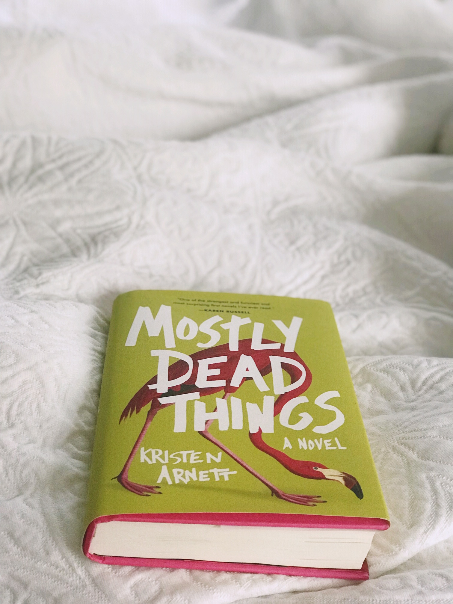 Mostly Dead Things by Kristen Arnett -