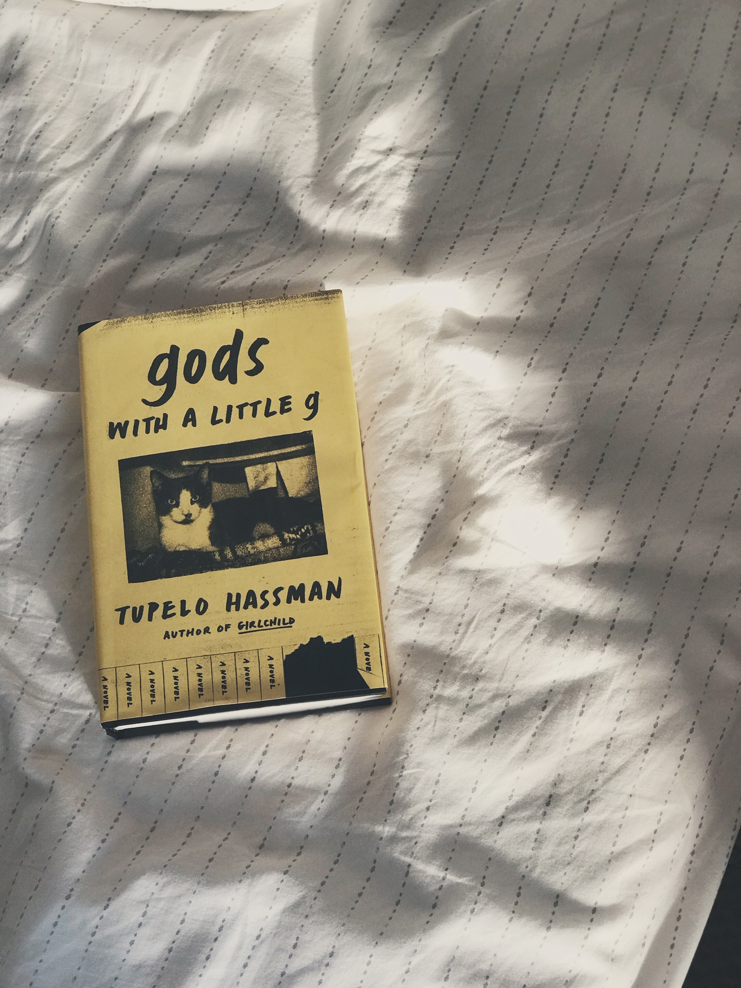 gods with a little g by Tupelo Hassman -
