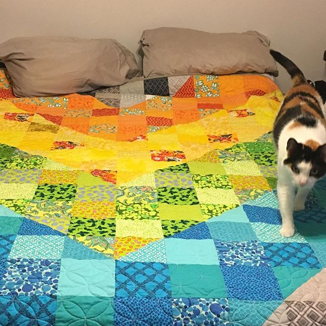 It's been more than a year in the making, but I finally finished our new bedspread! This thing is a behemoth. #quilting #scrappyquilt #colordivequilt #bonuscat