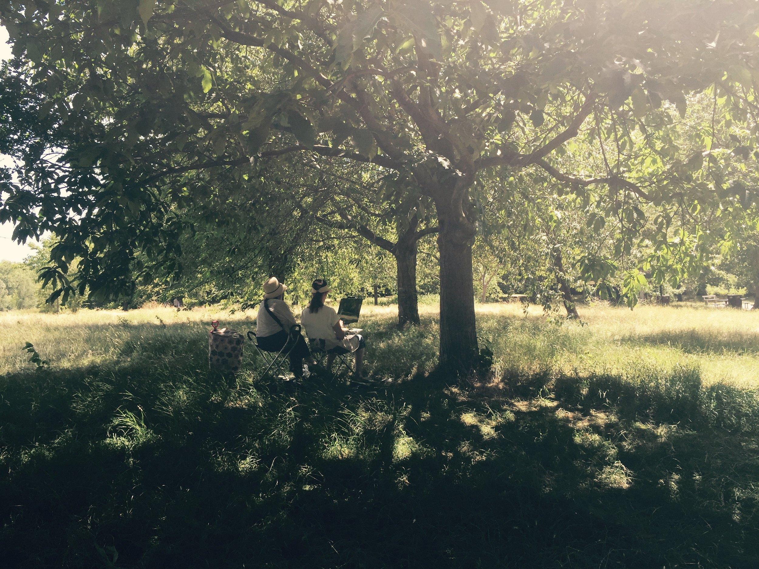 iPhone photography | regents park | photographer