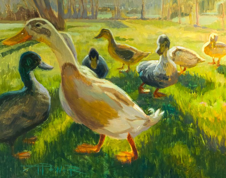 Anette Power, Duck Parade