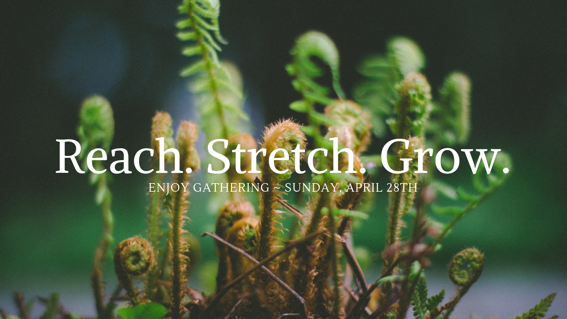 EG FBEVENT Reach. Stretch. Grow.png