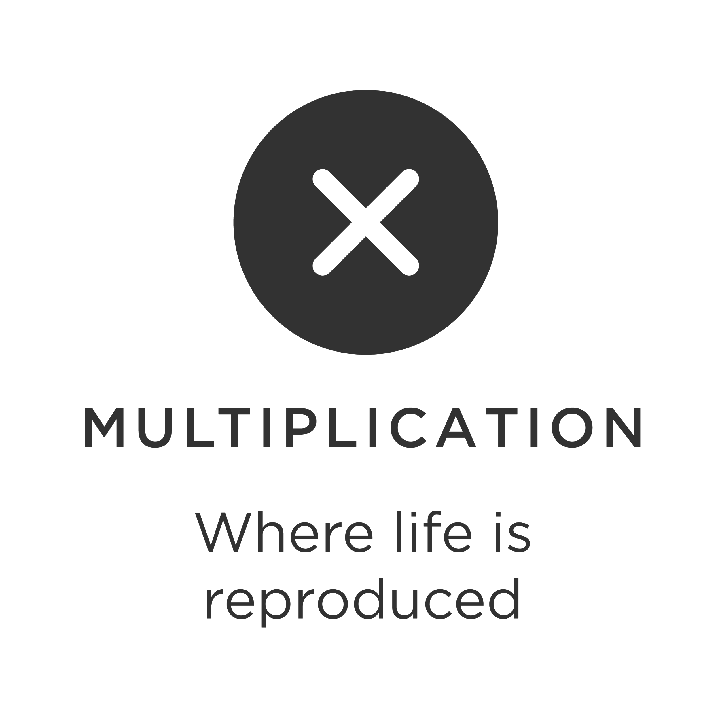 Multipication-01.png