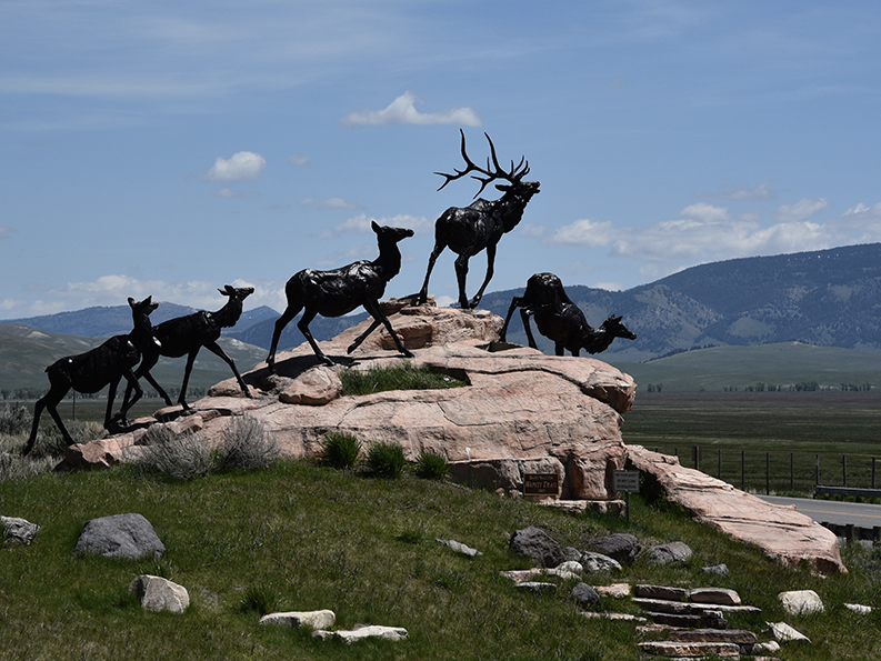 NATIONAL MUSEUM OF WILDLIFE ART & PALATE - We haven't visited, but hope to soon. The art museum & restaurant, Palate, overlook the elk refuge.VISIT SITE